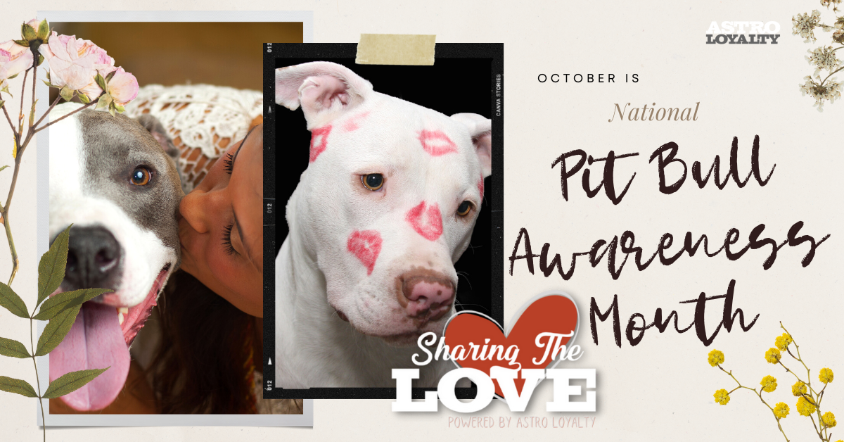 National Pit Bull Awareness Month