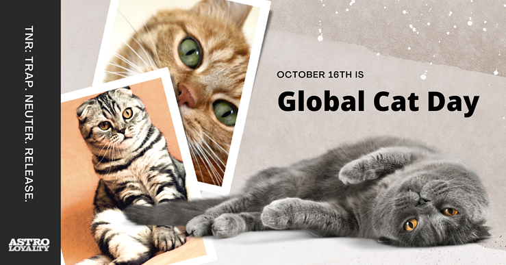 Oct. 16_Global Cat Day-1