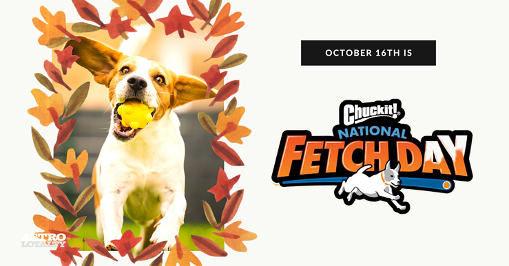 Oct. 17_National Fetch Day