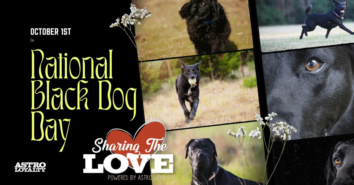 Oct. 1_National Black Dog Day