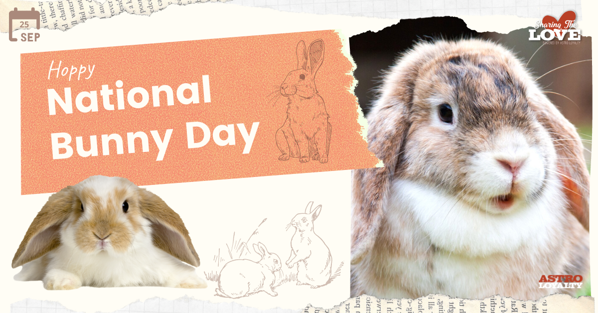 Sept. 23_ National Bunny Day